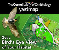 YardMap screenshot