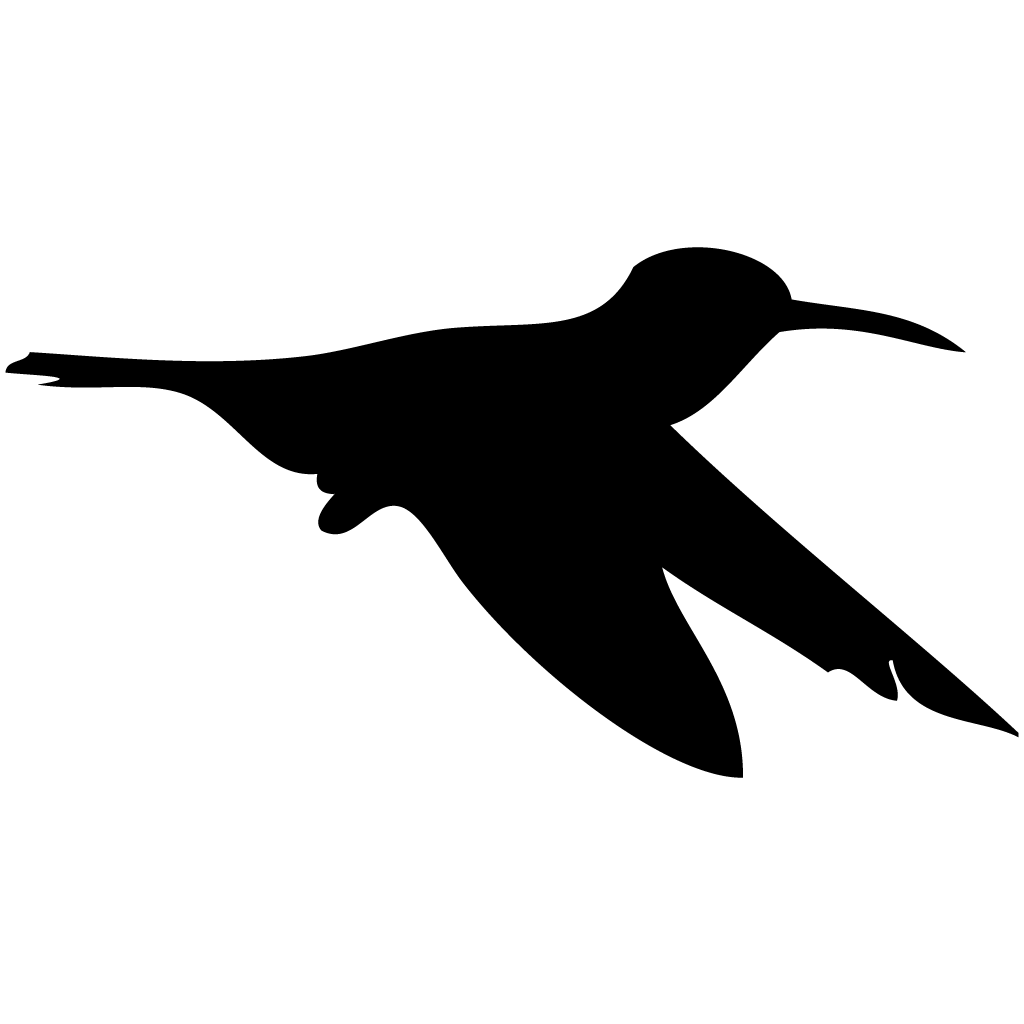 Silhouette Hummingbirds