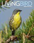 Living Bird cover, summer 2017. Photo by Brian Small.