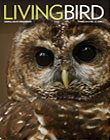 Living Bird spring 2016 cover image. photo by Gerrit vyn