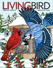 Living Bird 2017 cover, by Brenda Lyons