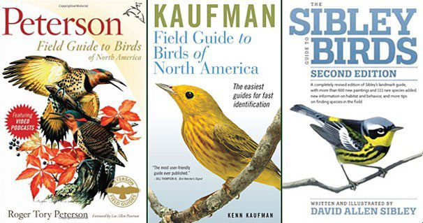 There are a variety of field guides to chose from. Peterson Field Guide to Birds of North America, The Sibley Guide to Birds, and The Kaufman Field Guide to Birds of North America are all good choices.