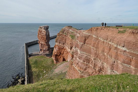 Helgoland hosts the 143rd meeting of the Deutschen Ornithologen-Gesellschaft—the German Ornithologists' Society