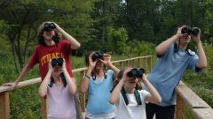 6 Steps to Choosing a Pair of Binoculars You'll Love