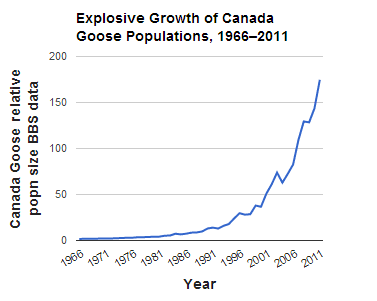 Graph of Canada Goose population growth