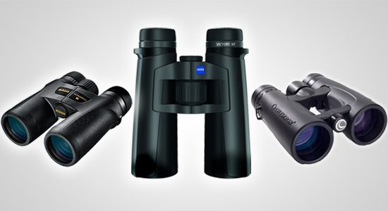 full 2013 Cornell Lab binocular review