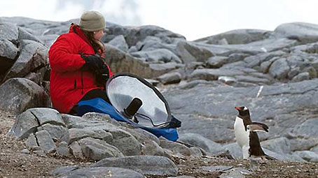 Jessie Barry, a scientist in the Macaulay Library, recorded penguins during a recent visit to Antarctica. by Chris Wood