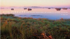 Site Fidelity: The Avian Treasures of Merritt Island, Florida