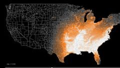 Animated Migration Map for Prothonotary Warbler