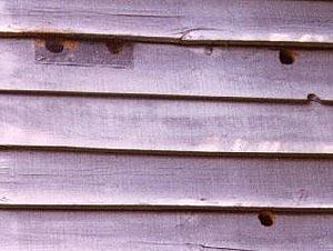 woodpecker holes in siding
