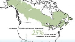 Boreal Forest conservation map