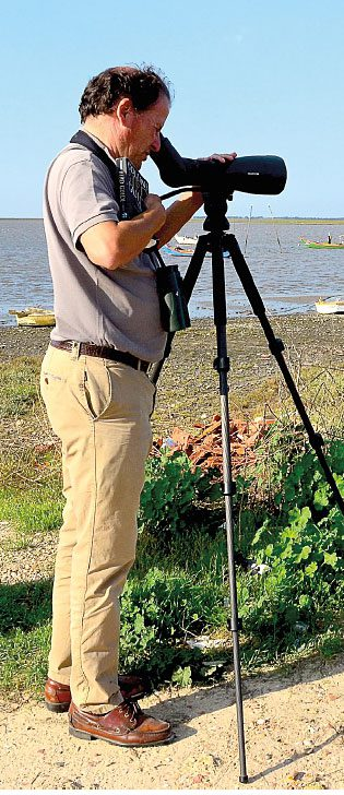 João Jara carefully scans a mudflat for shorebirds. He is one of the top birders in Portugal and has many first sightings for the country.