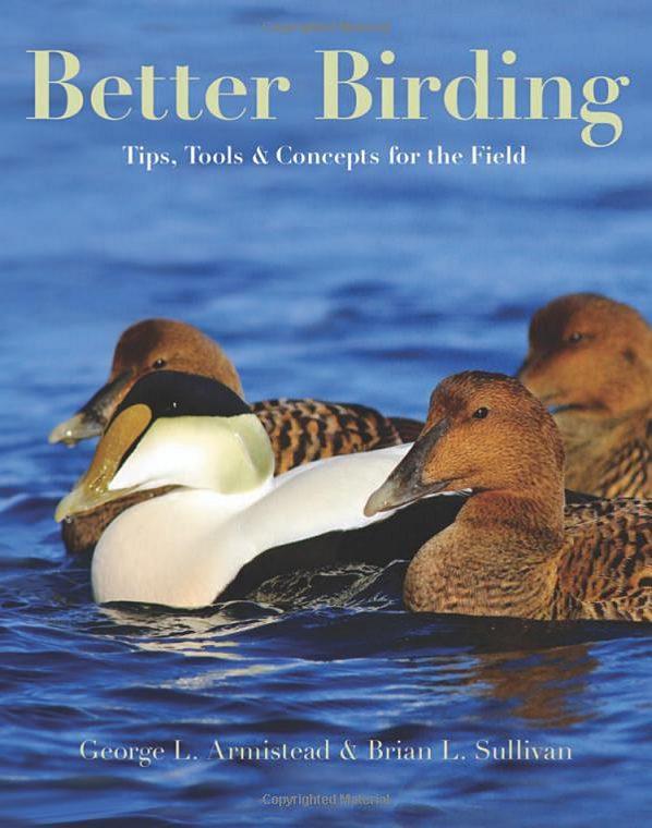 Better Birding by Brian Sullivan and George Armistead