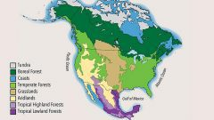 The State of North America's Birds 2016: Species Assessment Summary