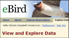 9 Ways People Have Used eBird Data to Make Conservation Happen