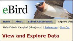 eBird data