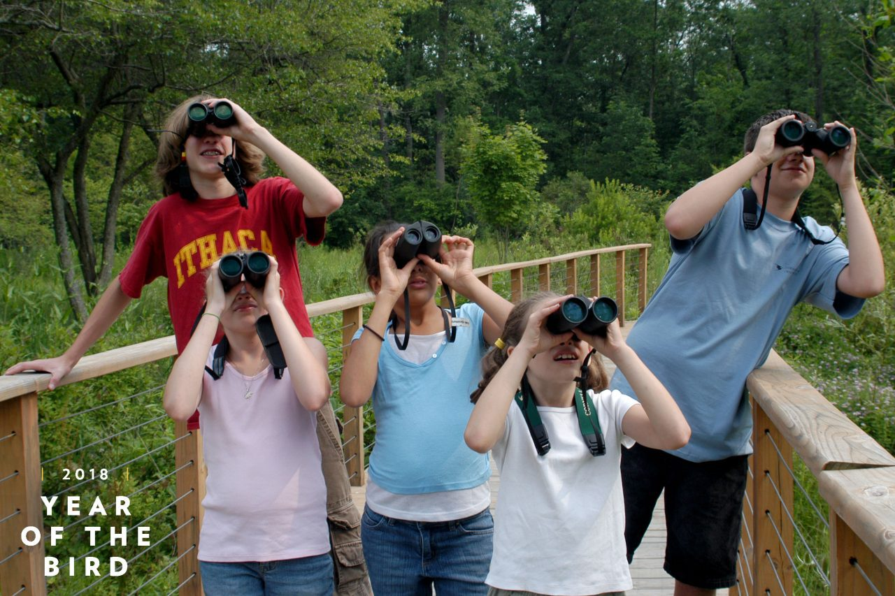 children birding by Susan Spear/Cornell Lab