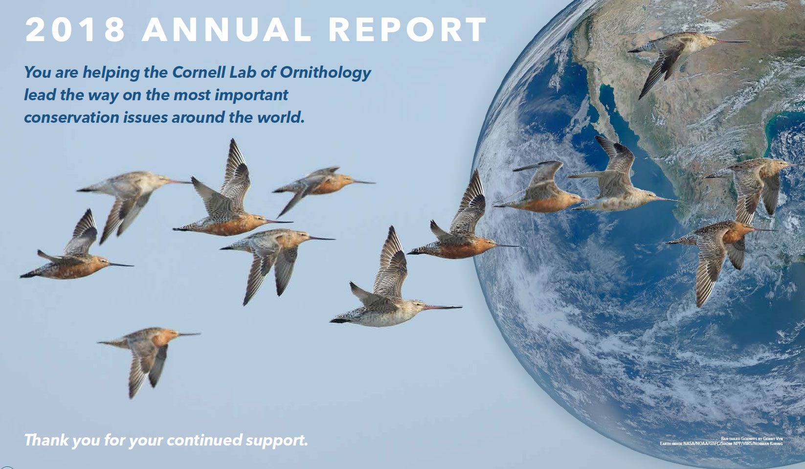 Read our 2018 Annual Report. Bar-tailed Godwits by Gerrit Vyn. Earth image NASA/NOAA/GSFC/Suomi NPP/VIIRS/Norman Kuring