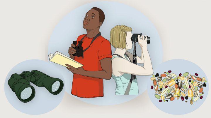Illustration by Bartels Science Illustrator Megan Bishop.