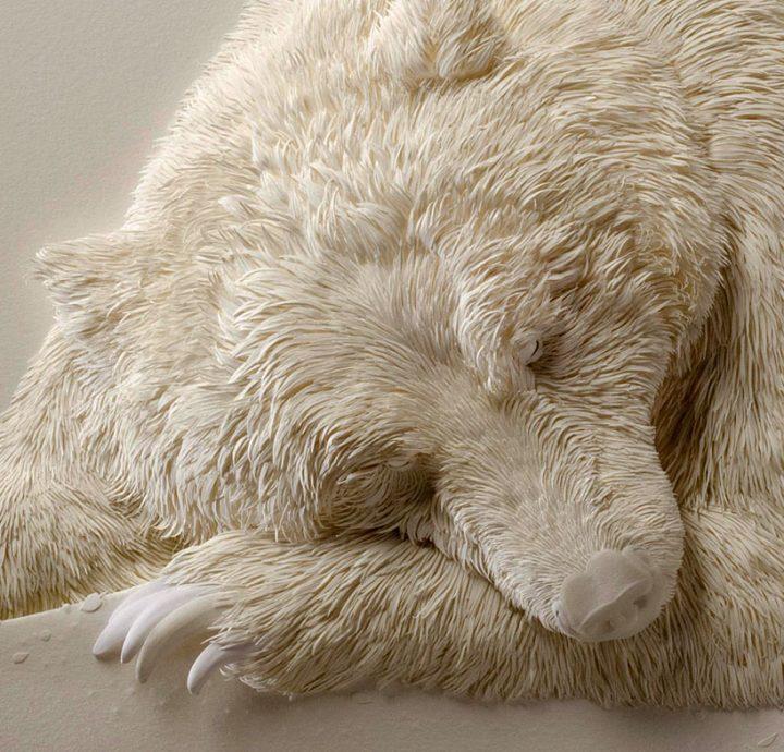 a bear by Calvin Nicholls
