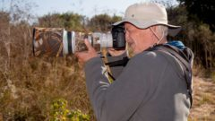 Peter Norvig, director of research at Google, mixes photography into his bird walk with the Santa Clara Valley Audubon Society in Silicon Valley.